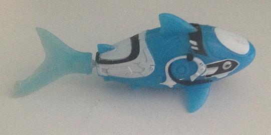 Spielzeugfisch ©Martina Rüter