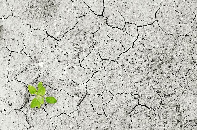 Dürren als Folge des Klimawandels - Quelle: Pixabay