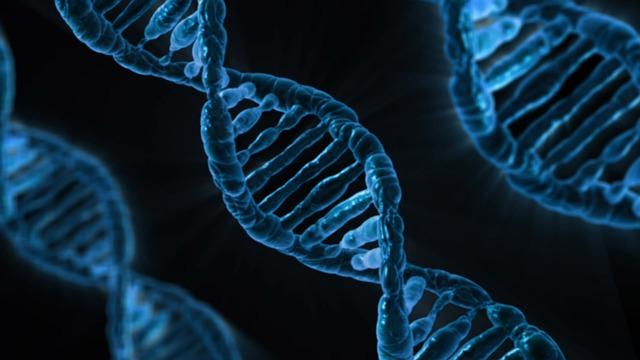 DNA - Quelle: Pixabay