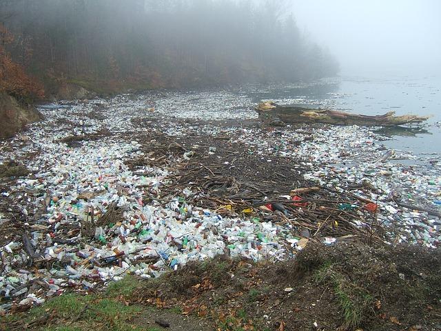 Umweltverschmutzung durch Plastik - Quelle: Pixabay